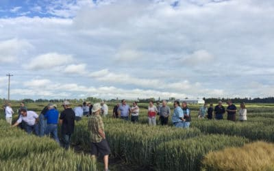 Advancing Crop Research