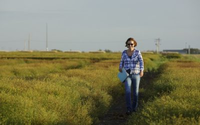 Breathing Life into Flax