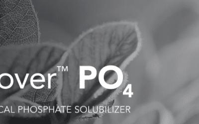 Recover PO4 Inoculant Improves Phosphorus Fertility Management