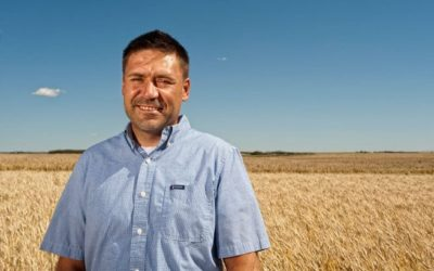 Crop Scientists Help Crack the Durum Wheat Genome