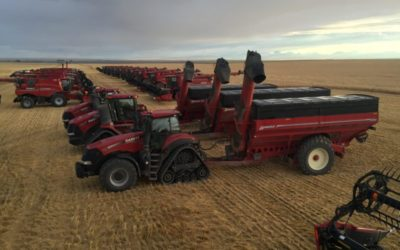 Help Wanted: Studies Warn Of The Growing Shortage Of Skilled Labour In Agriculture