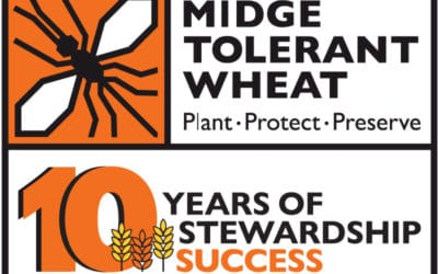 Celebrating 10 Years of Midge-Tolerant Wheat Stewardship