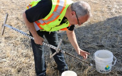 How Spring Soil Testing Can Help You Get the Most Out of Your Crop Input Dollars