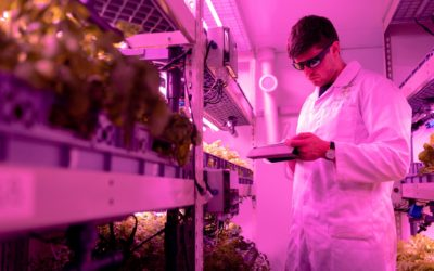 Alberta Government Sets Up Farmer Led Research Organization
