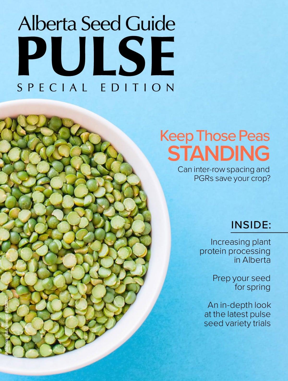 Special 2020 Pulse Edition