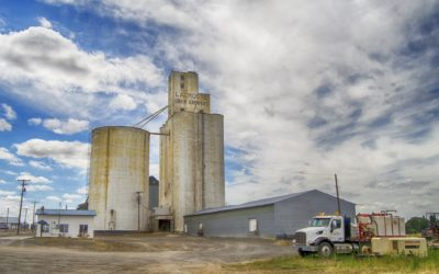 Changes to Canadian Grain Declarations