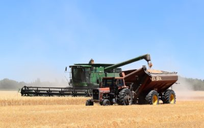 Harvest Progress Jumps on Warm, Dry Weather