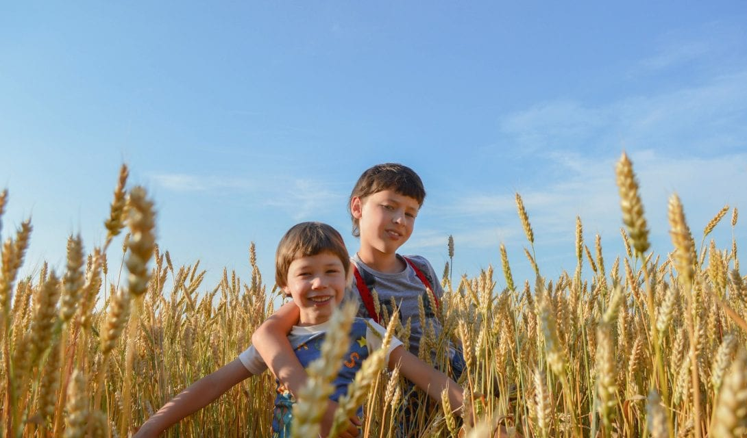 Kids in wheat field