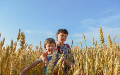 Alberta to Hold Open Farm Days on Aug. 15 and 16
