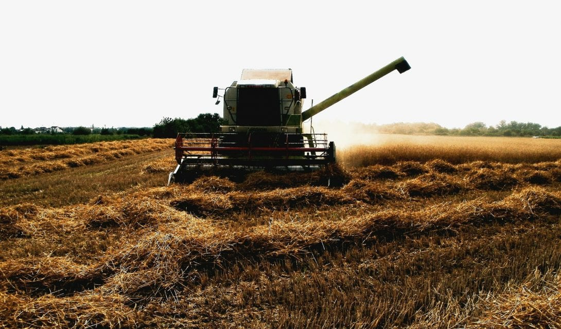 Combine at harvest