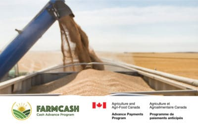 FarmCash: Savvy Producers' Harvest-Time Cash Management Solution