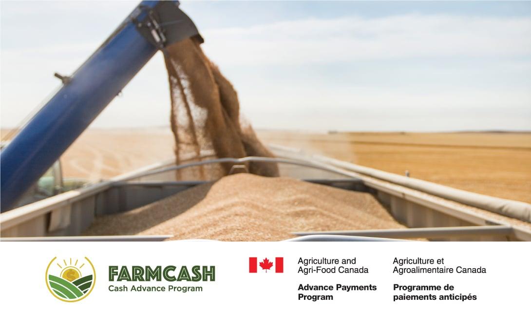 FarmCash grain unloading
