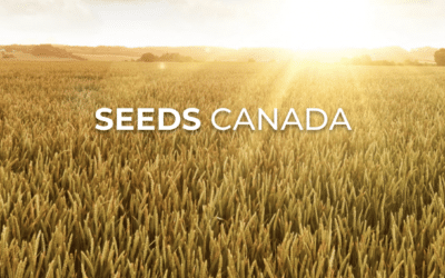 Seeds Canada is Moving Ahead