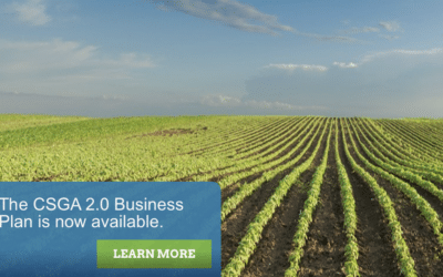 """New Business Plan Envisions a """"CSGA-Led, Government-Enabled"""" Certification System"""