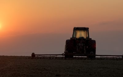 Alberta Ag Minister Working on Farmer Support for Dry Conditions