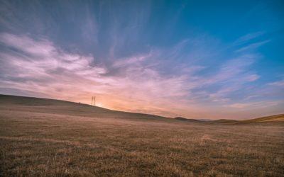 Heat Causing Fast Turning, Stagnate Alberta Crops