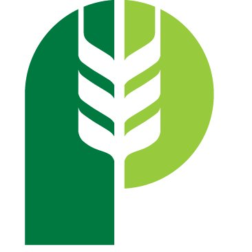 Pitura Seeds logo